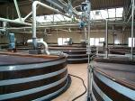 Mortlach distillery - Wash backs